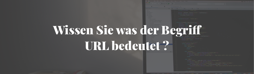Die Bedeutung des Begriffs URL